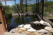 Hutchinson Zoo, Hutchinson, United States