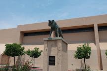 University of New Mexico, Albuquerque, United States