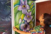 Rita's Art Sudio & Gallery, Praslin Island, Seychelles