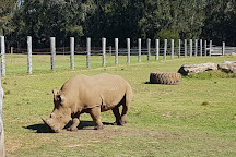 Mogo Wildlife Park, Mogo, Australia