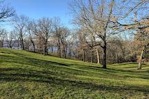 Buena Vista Park, Alma, United States