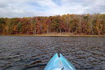 Rifle River Recreation Area, Lupton, United States