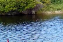 Russell Clark Reserve, Port Fairy, Australia
