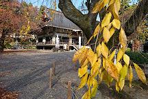 Myoryoji Temple, Minami Alps, Japan