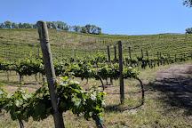 Chelan Estate Winery and Vineyard, Chelan, United States