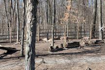 Olentangy Indian Caverns, Delaware, United States