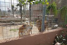 Zoo d'Abruzzo, Rocca San Giovanni, Italy