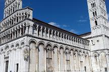 Guinigi Tower, Lucca, Italy
