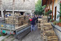 Museum of Beekeeping and Wine Cellar Zivanovic, Sremski Karlovci, Serbia