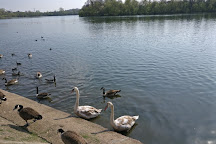 Aldenham Country Park, Elstree, United Kingdom