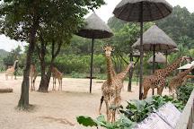 Guangzhou Zoo, Guangzhou, China