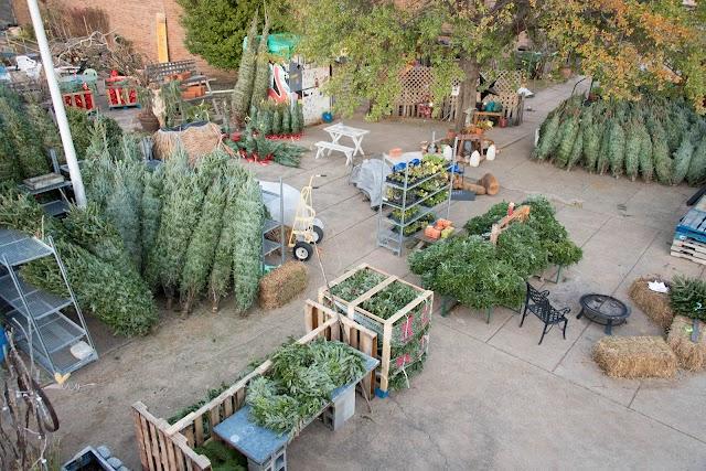 Olde City Farm & Garden