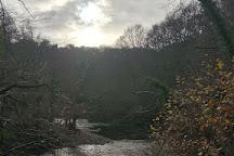 Hackfall Woods, Ripon, United Kingdom