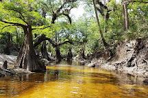 Econ River Wilderness Area, Oviedo, United States