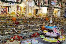 BAPS Lord Swaminarayan Temple Anand, Anand, India