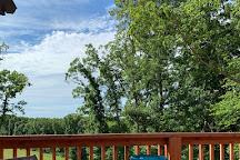 Peaceful Bend Vineyard, Steelville, United States