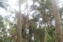 Paleo Hammock Preserve, Port Saint Lucie, United States
