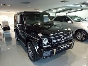 Mercedes-Benz Macgregor