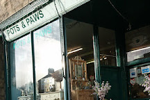 Pots & Paws, Rothbury, United Kingdom