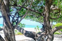 Malmok Beach, Palm - Eagle Beach, Aruba