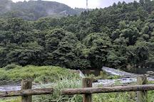 Kanagawa Prefectural Museum of Natural History, Odawara, Japan