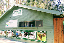 Currumbin Wildlife Sanctuary, Currumbin, Australia