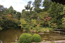Kyoto Bike Tour - The Bamboo Forest & Arashiyama, Kyoto, Japan