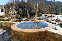 The Spa at Dollywood's DreamMore Resort, Pigeon Forge, United States