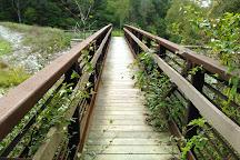 Yellowwood State Forest, Nashville, United States