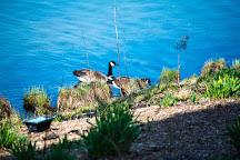 Skokie Lagoons, Winnetka, United States