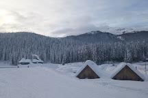 Pokljuka Plateau, Bled, Slovenia