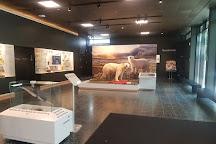 Zoologisches Museum, Hamburg, Germany