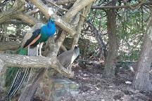 Macintosh Island Park, Surfers Paradise, Australia