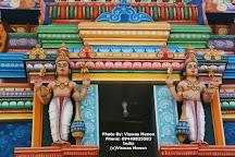 Kurinji Andavar Temple, Kodaikanal, India