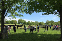 Blue Grass Tours, Lexington, United States