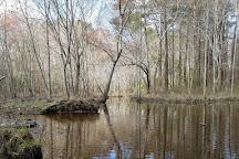 Lake Wilson, Wilson, United States