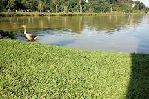 Parque Bacacheri, Curitiba, Brazil
