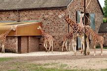 Chester Zoo, Chester, United Kingdom