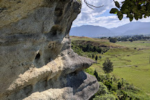 The Grove Scenic Reserve, Tasman, New Zealand