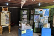 The Belize Zoo, La Democracia, Belize