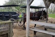 Amish Acres, Nappanee, United States