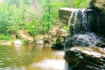 Talladega National Forest, Childersburg, United States