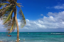 San Andres Fishing & Pesca, San Andres Island, Colombia