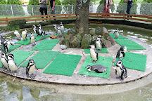Nasu Animal Kingdom, Nasu-machi, Japan
