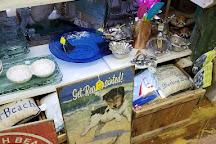 Sea Shell Shop, Rehoboth Beach, United States
