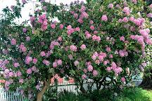 Hulda Klager Lilac Gardens, Woodland, United States