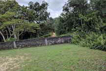 Akanda National Park, Libreville, Gabon