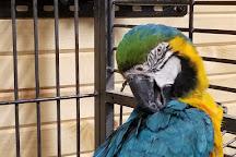 Safari Zoological Park, Caney, United States