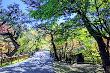 Hakodate Park, Hakodate, Japan