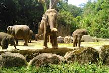 Indonesia Safari Park Cisarua, Cisarua, Indonesia